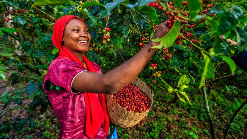 This company helps African farmers secure their land rights.