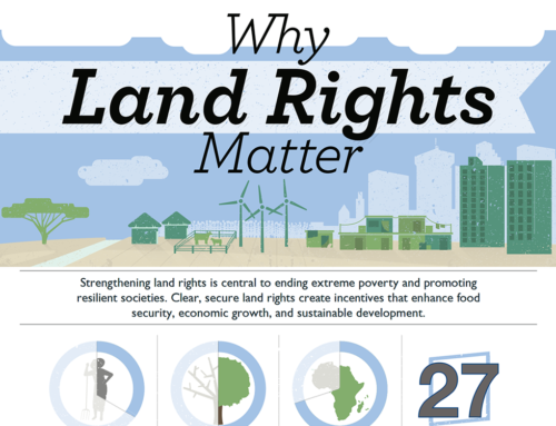 Land Tenure and Property Rights Infographic